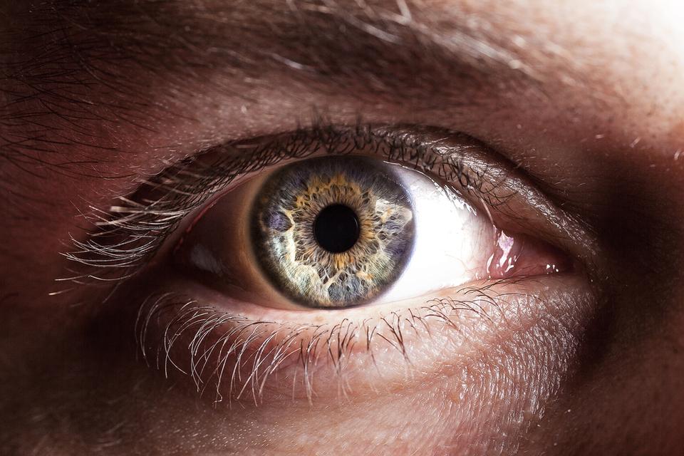 Observeren is essentieel, ook tijdens deze pandemie | Corion